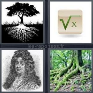 Solution 4 Images 1 Mot Arbre Racine De X Portrait 6 Lettres