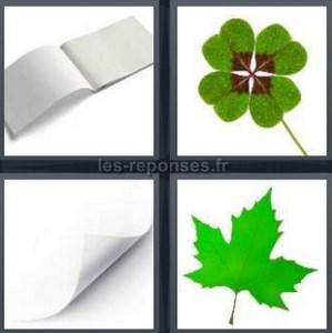 4 images 1 mot feuille trefle