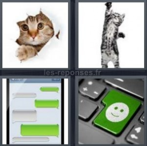 Solution 4 images 1 mot : chat + sms + smiley clavier (4