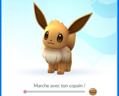 nombre bonbon copain pokemon go