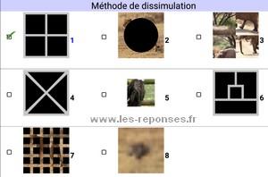 8 méthodes de dissimulation dans Quiz Image