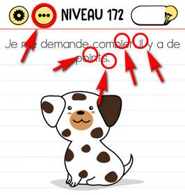 réponse points chien brain test niveau 172