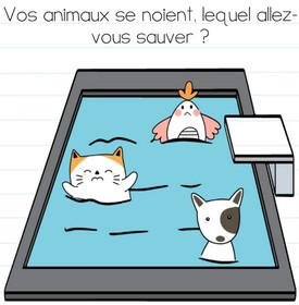 brain test niveau 184 animaux piscine