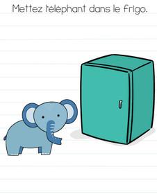 brain test niveau 3 solution frigo elephant