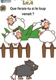 brain boom niveau 4 loup mouton